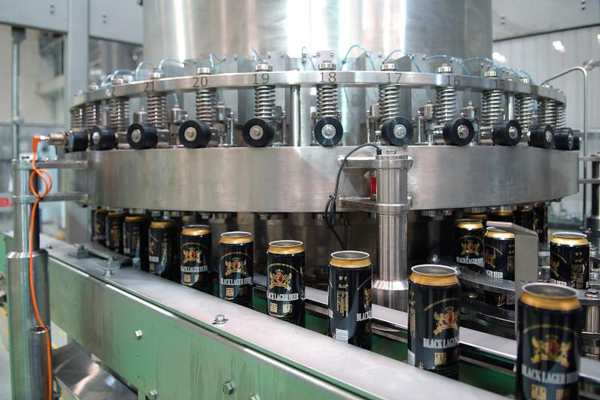 craft beer canning equipment